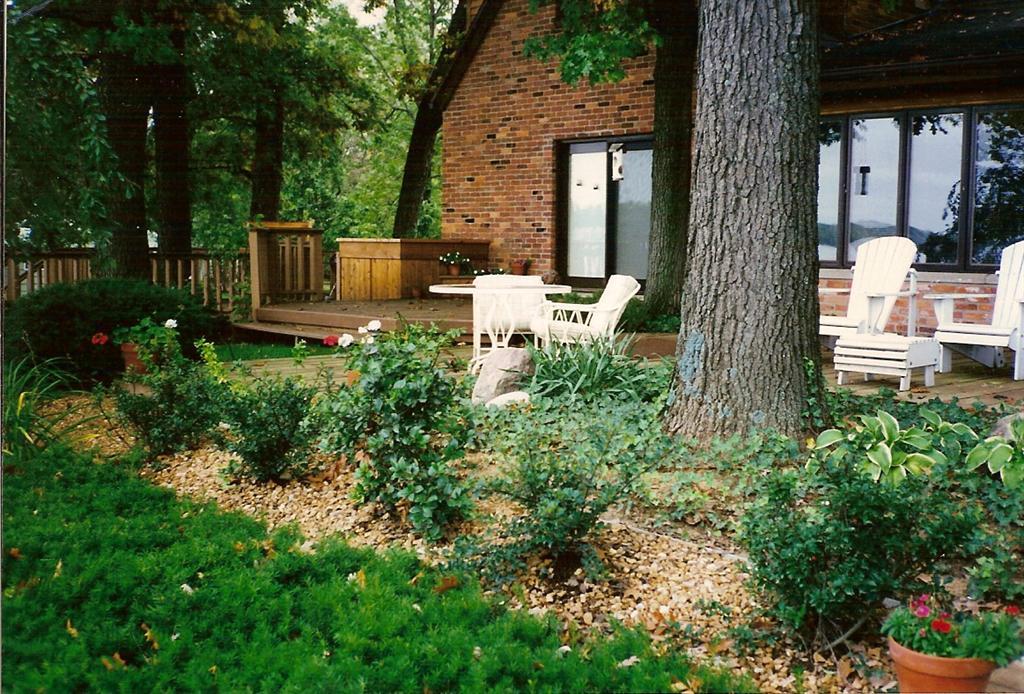 Backyard_Landscape_Planting