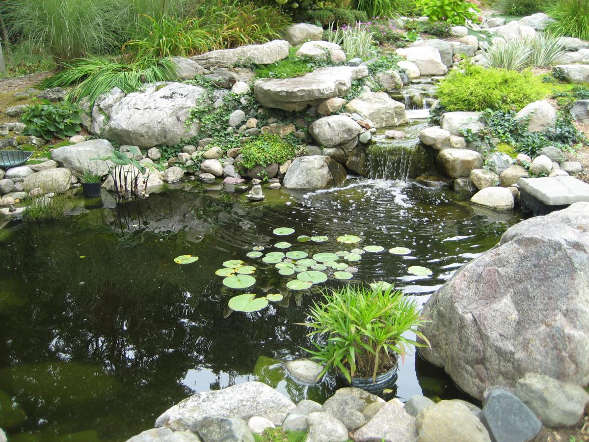 Village_Landscape_Pond_1