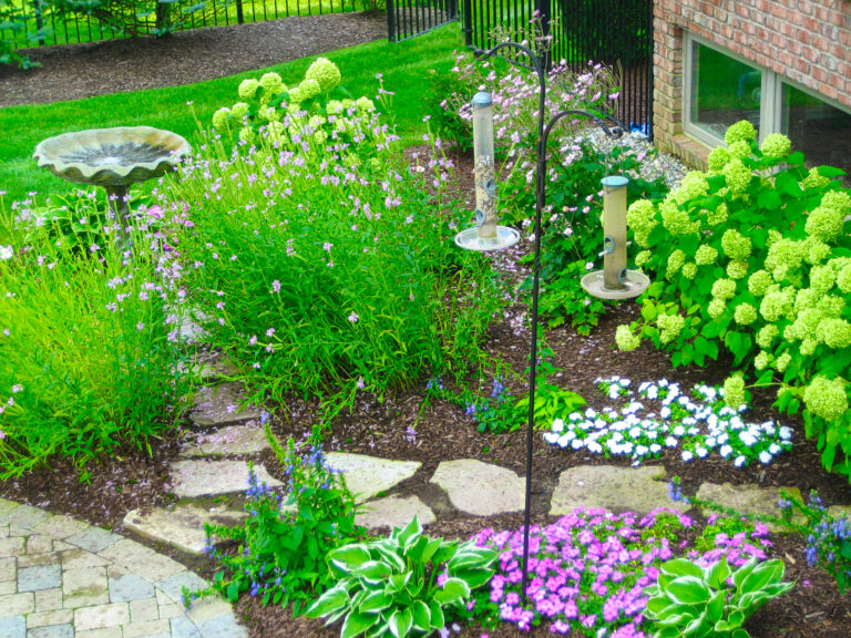Garden_Plantings_and_Birdfeeder