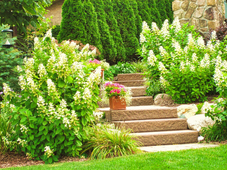 Hardscape_Garden_Stairs_and_landscaping